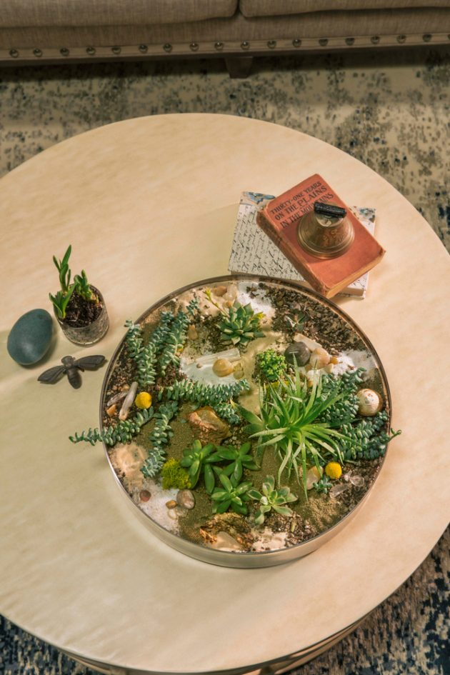 Whimsical Farmhouse Succulents As Decor